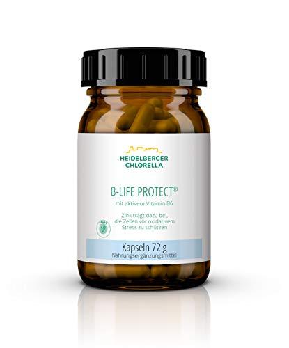 Heidelberger Chlorella – B-Life Protect Kapseln, mit aktivem Vitamin B6 (Pyridoxal-5-Phosphat), vegan, hochdosiert, hohe Bioverfügbarkeit, hergestellt in Deutschland, 72 g, 120 Kapseln