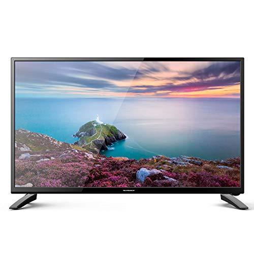 Schneider TV LED 24' Full HD, SC-LED24SC510K, HDMI, USB 2.0,...