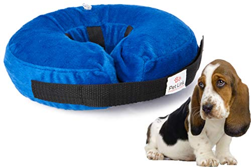 Inflatable Dog Collar, Recovery Cone, After Pet...