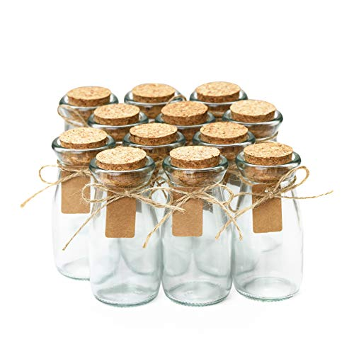 Small Glass Bottles with Cork - 3.4 oz Mini Jars with Lids for Party Favors, Set of 12 - Wedding, Apothecary, Spices, Candy Containers