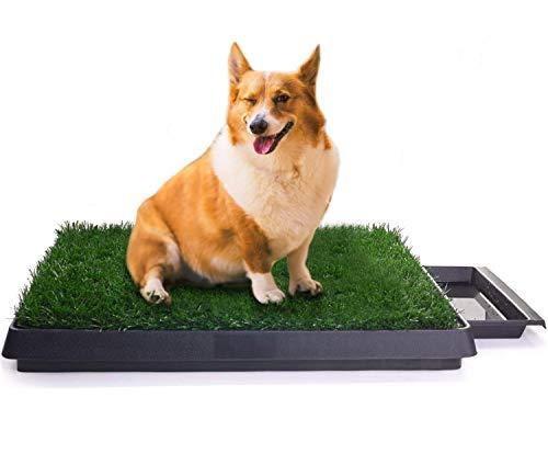 Sailnovo Hundeklo Hunde Toilette Simulation Rasen Welpentoilette Trainingsunterlage für Kleine Hunde Grosse Hunde ältere Hunde Tier WC Indoor 63 x 50x 7(L x B x H) cm (2)