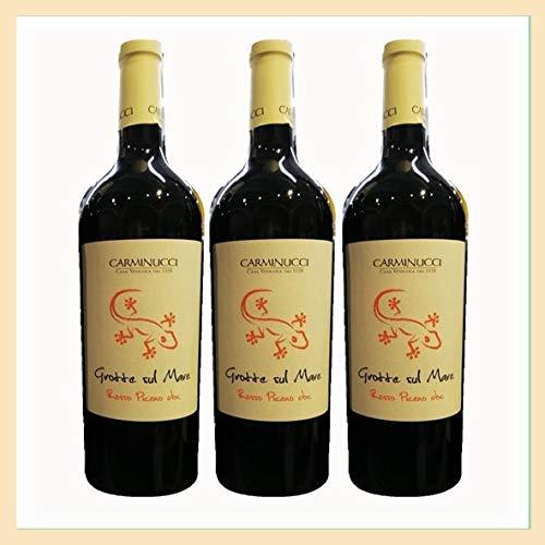 3x vino Rosso Piceno DOC Grotte sul Mare, Cantina Carminucci, Grottammare, Ascoli Piceno, Italy, prodotto tipico marchigiano