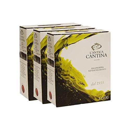 Bag in Box Falanghina - Daunia IGP - 3 Bag in box da 5 litri (15 litri)
