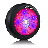 Mrhua 300W UFO LED Grow Light, LED Plant Grow Lights Full Spectrum with CREE COB More Higher Par Value for Indoor Plants Hydroponic Greenhouse Veg Bloom Flowering Seedling to Harvest