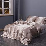 Sleepymoon Duvet Cover Set Silk Like Twin Full Queen King (Champagne, Full/Queen)