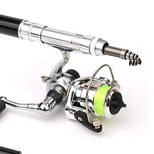 LMEI-QUN Mini Portatile Tipo di Penna Canna da Pesca telescopica Canna da Pesca con Mulinello da Pesca in Metallo all'aperto Attrezzatura da Pesca Accessori (Color : Black)