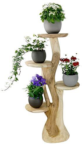 My-goodbuy24 Blumenständer Blumentreppe Blumenpodest Blumenhocker Pflanzen Blumen Deko Treppe Holz Massivholz Suar mit 4 Ablagen