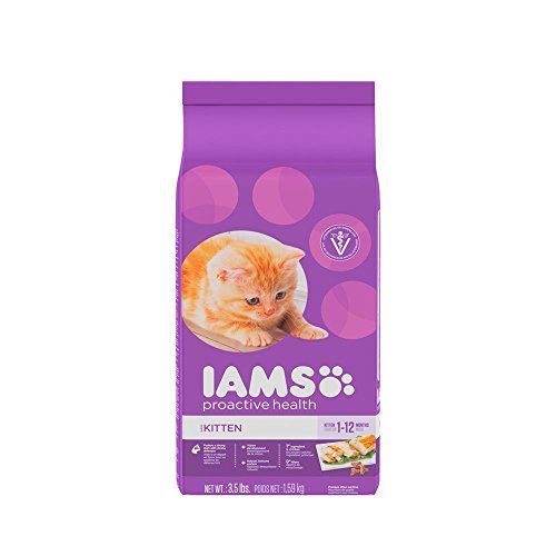 IAMS-PROACTIVE-HEALTH-Kitten-Dry-Cat-Food-35-Pounds-Pack-of-2