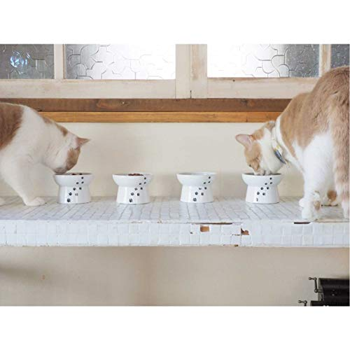 Necoichi Raised Cat Food Bowl, Cat, 0.294999999999998 kg