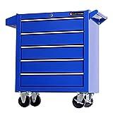TANKSTORM Tool Chest Heavy Duty Cart Steel Rolling Tool Box 5 Drawer Cart (TZ35 Blue)