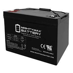 12V 100AH SLA Battery - Mighty Max Battery Brand Product