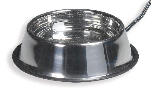 API Heated Steel Dog Bowl Stainless Steel Heated...