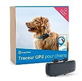 Tractive collier GPS pour chien, Traceur avec portée illimitée, Suivi d'activité, Étanche, Léger (Dernier...