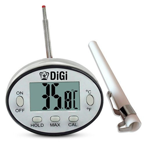 DiGi Digital Candy Thermometer