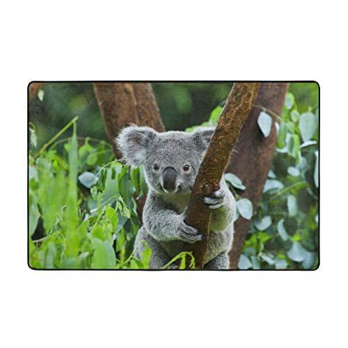 zheng Tappeto Tappetino da Bagno,Pelliccia eucalipto Ramo in Via di estinzione Orso Albero di Koala Naturale Australia arborea Animale Bagno Tappeto 45 cm x 75 cm