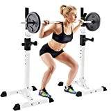 Liju Barbell Rack Stand Squat Rack Cap Barbell Dumbell Rack Gym Bench Press Squat Bench Press Rack Dipping Station Dip Stand Fitness Bench Press Equipment Home Gym