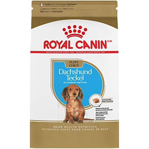 Royal Canin Dachshund Puppy Breed Specific Dry Dog...