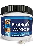 Nusentia Probiotics Animaux Probiotiques - Formule Complète Vétérinaire pour Canine et Féline Santé intestinale - Poudre probiotique Miracle (jusqu'à 120 Portions)