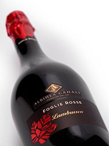 FOGLIE ROSSE Lambrusco Reggiano DOC Secco - Albinea Canali - Vino rosso frizzante - Bottiglia 750 ml