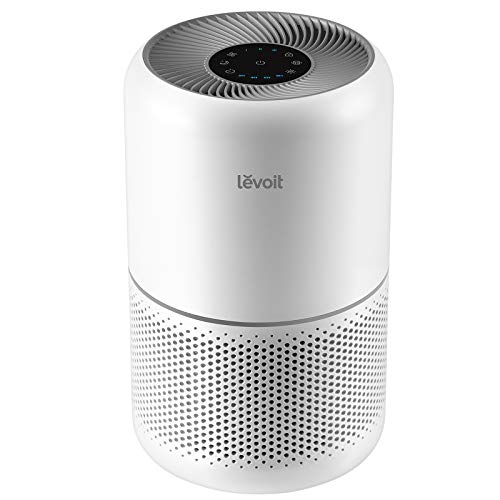 41MmT7Y3HDL - 10 Best Air Purifier Reviews & Buyer's Guide 2021