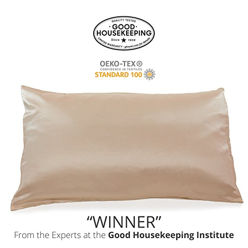 Fishers Finery 25mm 100% Pure Mulberry Silk Pillowcase Good Housekeeping Winner (Taupe, Queen)