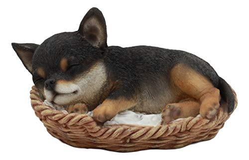 """Ebros Lifelike Adorable Chihuahua Dog Sleeping in Wicker Basket Statue 6.5"""" Long Realistic Picante Taco Puppy Pet Pal Dog Breed Collectible Resin Decor Figurine"""