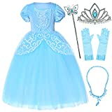 Princess Cinderella Costume Girls Dress Up with Accessories 5T 6T