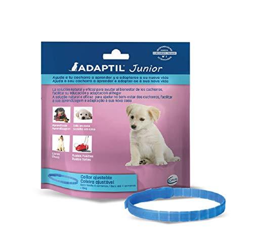 ADAPTIL Junior - Antiestrés para cachorros - Adaptación al hogar,...