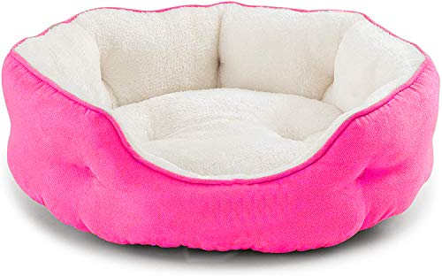 Pawsome Round Cat Bed for Indoor Cats Clearance Washable Dog Bed for Puppy and Kitties with...