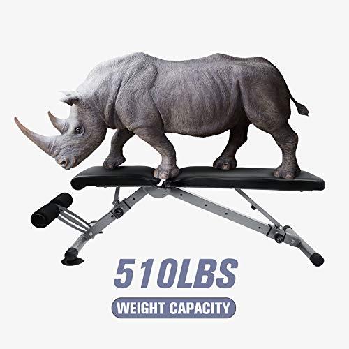 41SBLC94r+L - Home Fitness Guru