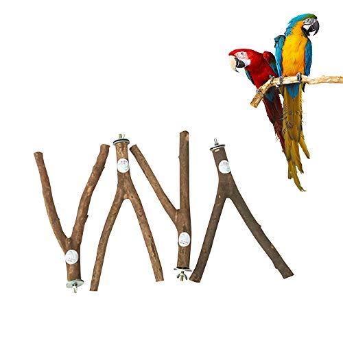 Sitzstangen für Tauben, Papageien, 4 Stück, Y-Form, Sitzstangen aus natürlichem Holz, Finken, Nymphensittiche, Hahn, Stützzubehör für Taube, Vögel, Kanarienvögel, Finken, kleine fliegende Tiere