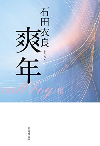 爽年 (集英社文庫)