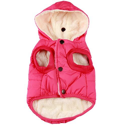 JoyDaog (forro polar cálido+forro de algodón con capucha para perro...