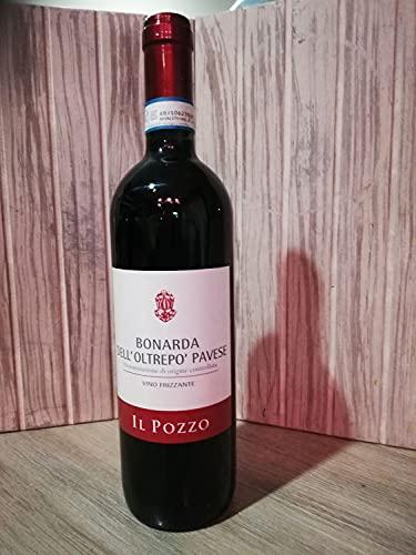 BONARDA DELL'OLTREPO' PAVESE'IL POZZO' - Cartone di 6 bottiglie da 75 cl.