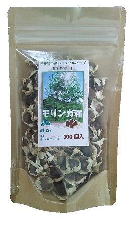 モリンガ種40g(約100個程度)※種植えは5月~7月が最適
