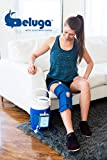 Ice Machine for Knee After Surgery or Injury | Circulating Cold Therapy System | Beluga Arctic Flow with Knee Wrap, Powered
