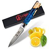 Dnifo Classic Paring Knife 3.5 Inch, Damascus Steel Japanese Knife - Sharp fruit knife for Peeling, Cutting, and Slicing - Non-stick Blade and Anti-rusting Forged Cutlery Knife