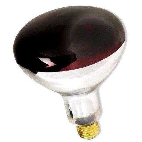 Triangle Bulbs T20931 - 250R40/RED, 250 Watt, R40 Reflector, 120 Volt, Red, Standard E26 Base, Incandescent Heat Lamp Light Bulb