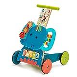 Labebe - Trotteur Bebe, Marcheur, Chariot de Marche, Chariot Enfant, Trotteur Bebe Fille/Garcon, Roues Jouet Chariot Bois, Pousser Trotteur pour 1 Ans et Plus
