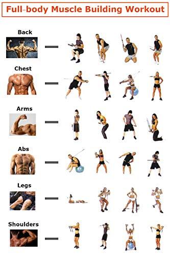 41UgyH5ISpL - Home Fitness Guru