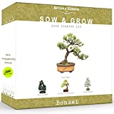 Nature's Blossom Bonsai Tree Kit - Grow 4 Types of Bonsai Trees From Seed. Indoor / Outdoor Gardening Starter Set with Tree Seeds, Soil, Pots, Labels, Growing Guide.