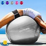 Arteesol Balle Fitness 65 cm/75 cm Anti-éclatement Anti-dérapant Yoga...