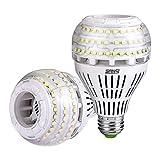 Sansi Ampoule LED E27 Dimmable Ampoule Edison 4000 Lumen 27W (250W...