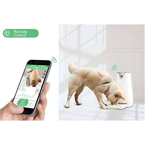 Cat | ZZSSBCKT Auto Smart Feeder,Dog Cat Pet Care Device with Camera Timer Voice Video Recorder Remote Enabled, A, Gym exercise ab workouts - shap2.com