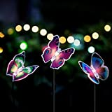 Butterfly Garden Solar...image