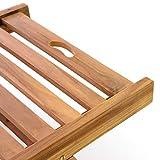 Divero GL05654 Sonnenliege Gartenliege Relaxliege Liege aus Teak Holz behandelt klappbar extra hohe Rückenlehne 5-Fach verstellbar, Braun - 3