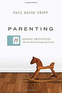 Parenting 14 Gospel Principles That Can Radically Change Your Family