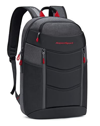 ASPENSPORT Lightweight Laptop Backpack TSA-Friendly Slim Stylish Travel College School Computer Bag fit 17 Inch Notebook Water Repellent for Men & Women Dark Grey/Red