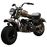 MASSIMO Warrior200 196CC Camo Mini Moto Trail Bike MX Street for Kids and Adults, Wide Tires