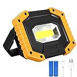 Projecteur LED Rechargeable 30W, T-SUN lumière de Travail, Projecteur...